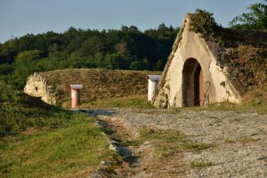 Local wineproducers of boutique wines
