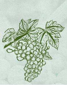 Artisan Tokaj wine makers from Viničky